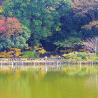 鮫島弓起雄 アート 公園 インスタレーション sameshima yumikio art park public installation